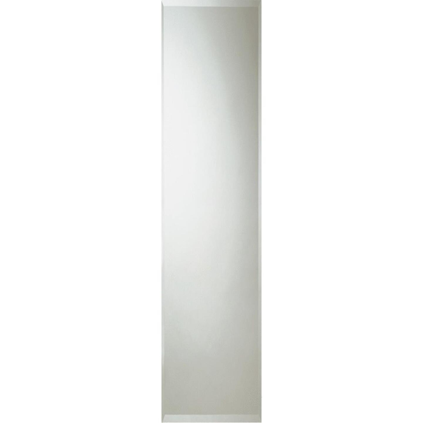 Erias Home Designs 16 In. W. X 60 In. H. Frameless Beveled Edge Door Mirror Image 1