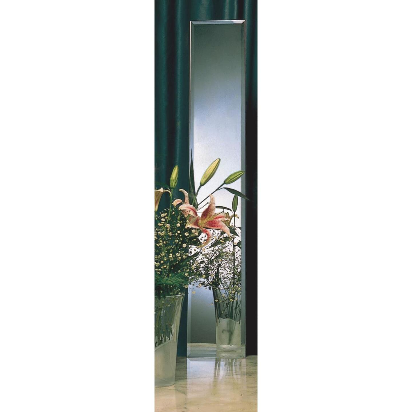 Erias Home Designs 16 In. W. X 60 In. H. Frameless Beveled Edge Door Mirror Image 2